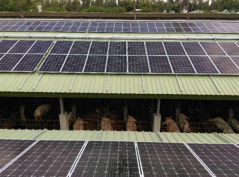大亞集團再生能源電廠穩健發展 攜手台糖畜殖事業部共創綠境